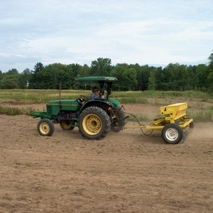 Planting Switchgrass Seeds